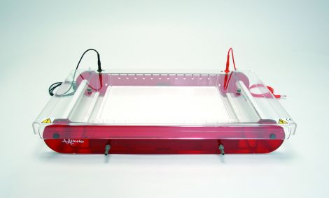 SUB25C Maxi-Plus Cooled Submarine Gel Electrophoresis Unit