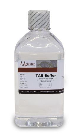 Tris-Acetate-EDTA (TAE Buffer), 10X Solution