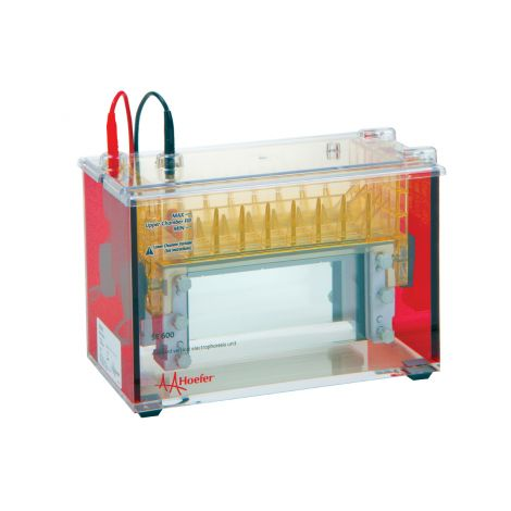 Wide-Mini Vertical Protein Electrophoresis Unit (SE640)
